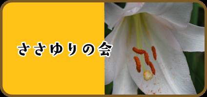 ささゆりの会 活動紹介